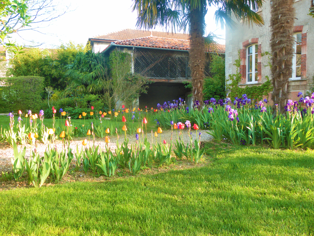 The spring at La Flambelle